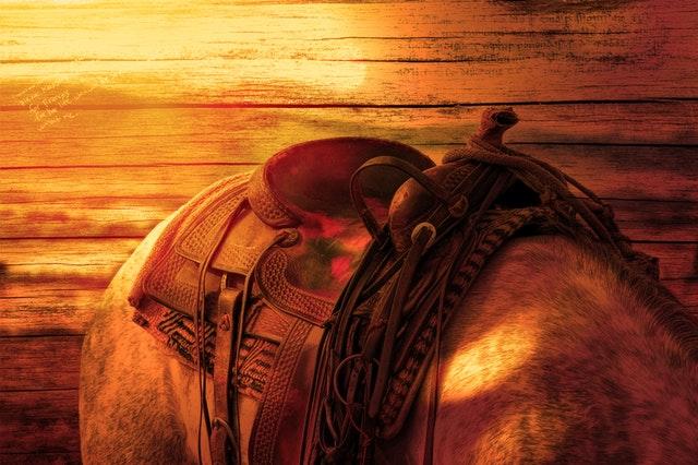 sedlo na koni